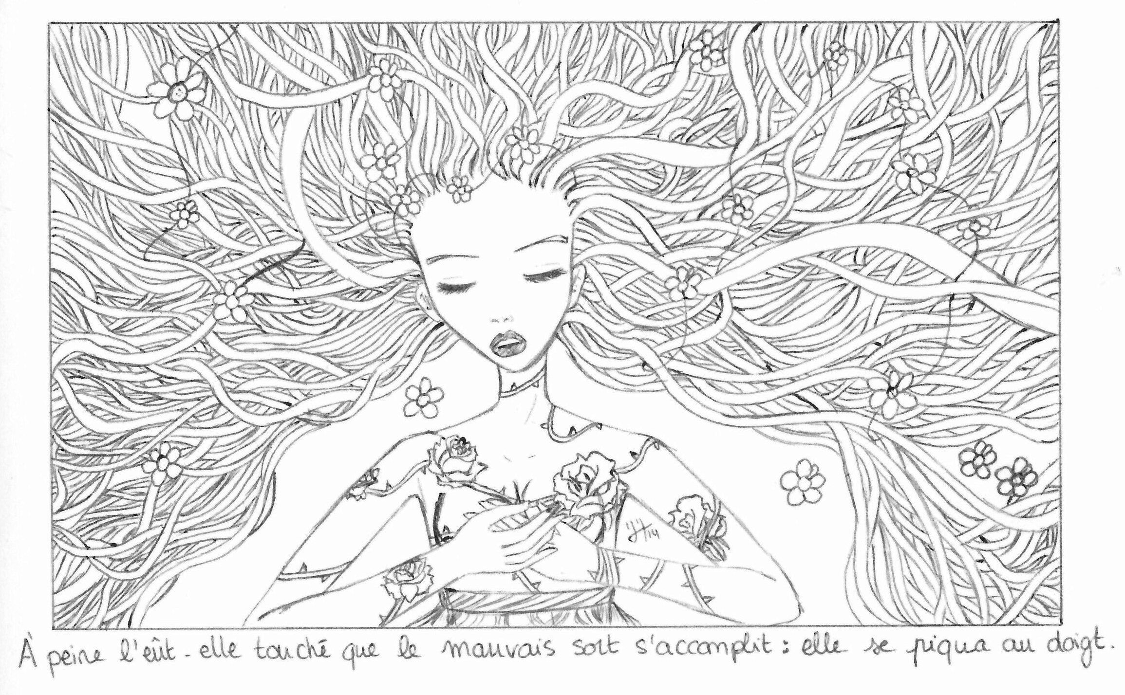 Histoires de Princesses...