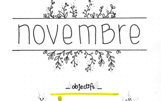 Mon bujo de novembre